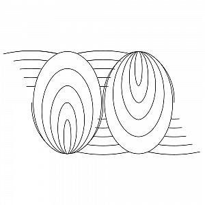 simple oval border 003 | Sweet Dreams Quilt Studio